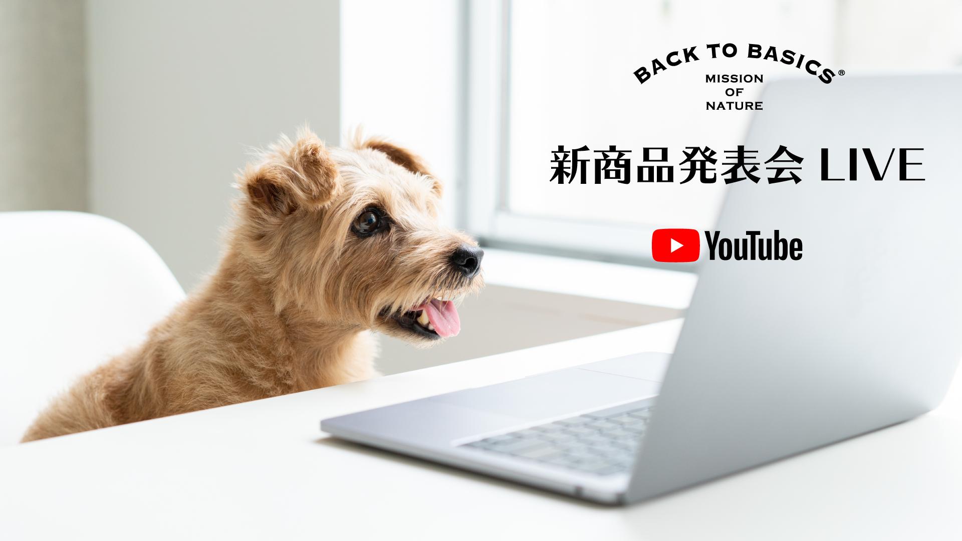 YouTube Live!新商品発表会のお知らせ